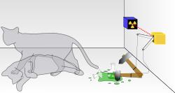 250px-Schrodingers_cat.svg