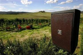 A loud speaker is seen at Italian wine maker Carlo Cignozzi's vineyard in the Tuscan town of Montalcino in central Italy, as a grape picker works during harvest September 30, 2005. Cignozzi placed speakers spreading music of classical composers through his vineyard, experimenting with positive biodynamic effects produced by musical vibrations on growing grapes. REUTERS/Alessia Pierdomenico